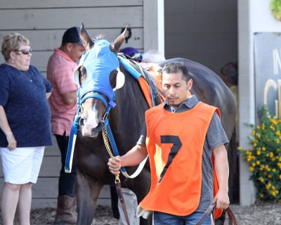 Expect Indy gets Revenge in Shelby County Stakes Win at Indiana Grand Racing & Casino