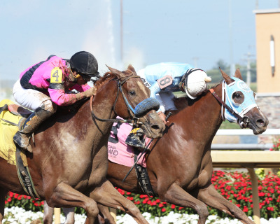 Shes the Cause Upsets in City of Anderson Stakes at Indiana Grand Racing & Casino
